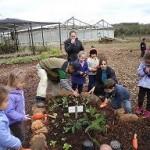 Horta comunitária complementa educação ambiental em Ivoti